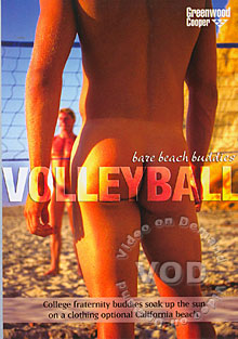 Volleyball Box Cover