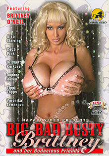Big Bad Busty Brittney And Her Bodacious Friends Box Cover