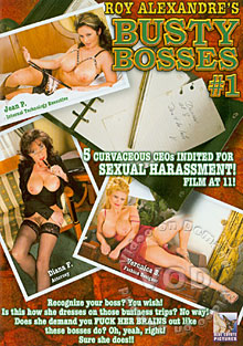 Busty Bosses #1 Box Cover