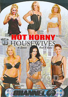 Hot Horny Housewives Box Cover