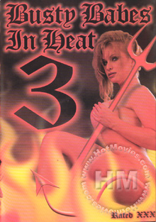 Busty Babes in Heat 3 Box Cover