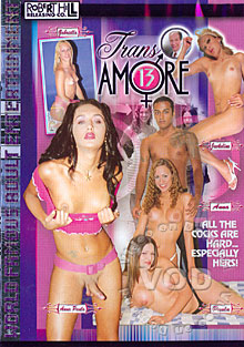 Trans Amore 13 Box Cover