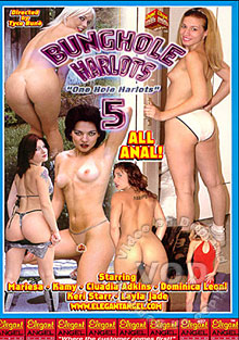 Bung Hole Harlots 5 Box Cover