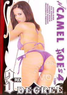 Camel Hoe's 4 Box Cover