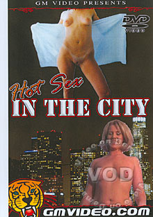 Hot Sex In The City Box Cover