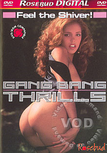Gang Bang Thrills Box Cover