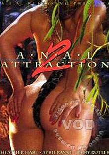 Anal Attraction 2 Box Cover