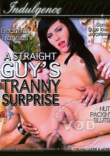 A Straight Guy's Tranny Surprise Box Cover