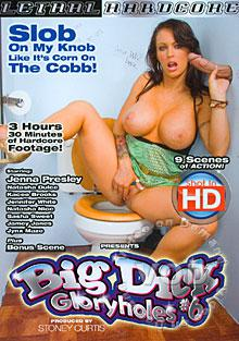 Big Dick Gloryholes #6 Box Cover