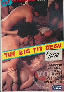 Big Tit Orgy Box Cover