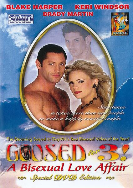 Goosed For 3! - A Bisexual Love Affair Box Cover