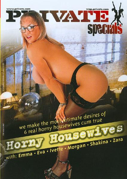 Horny Housewives Box Cover