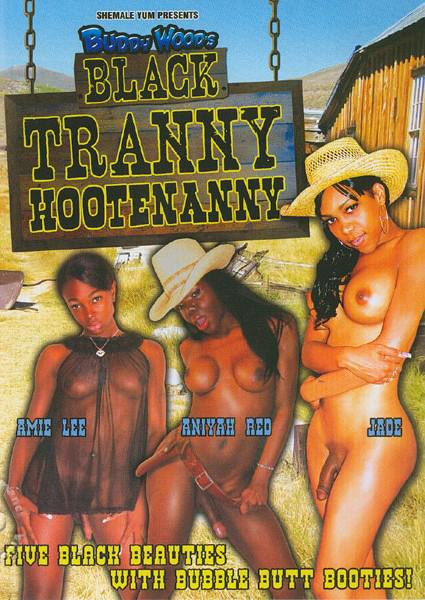 Black Tranny - Hootenanny Box Cover