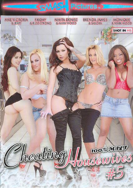 Cheating Housewives #5 Box Cover