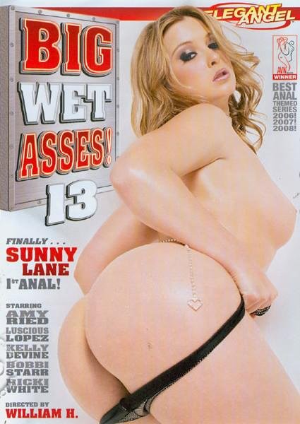 Big Wet Asses! 13 Box Cover