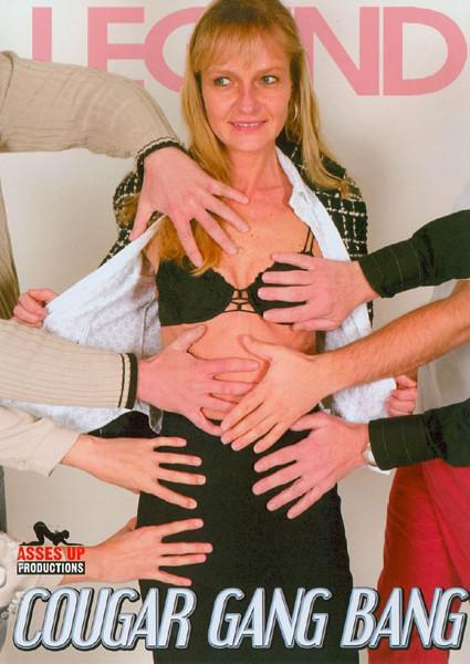 Cougar Gang Bang Box Cover