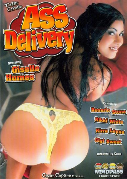 Ass Delivery Box Cover