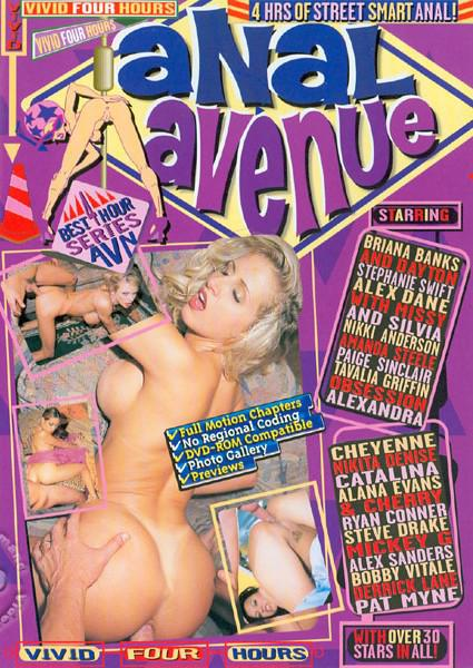 Anal Avenue Box Cover