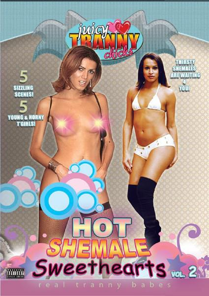 Hot Shemale Sweethearts 2 Box Cover