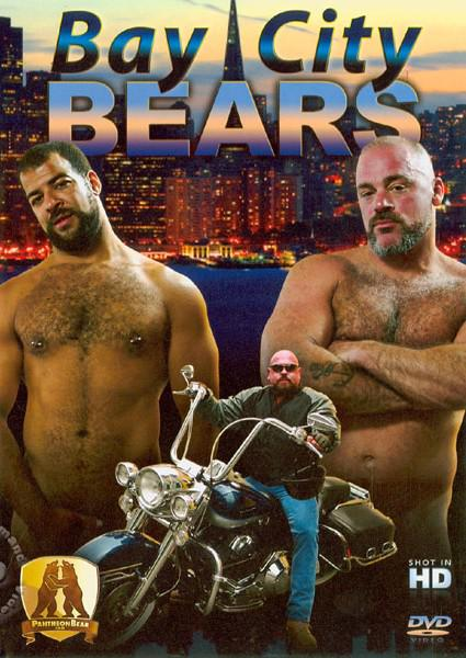 Bay City Bears Box Cover