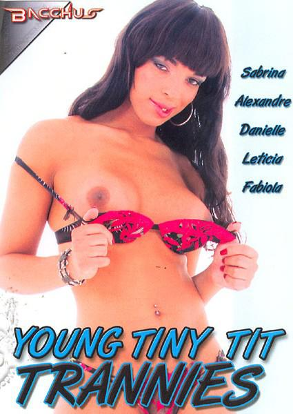 Young Tiny Tit Trannies Box Cover