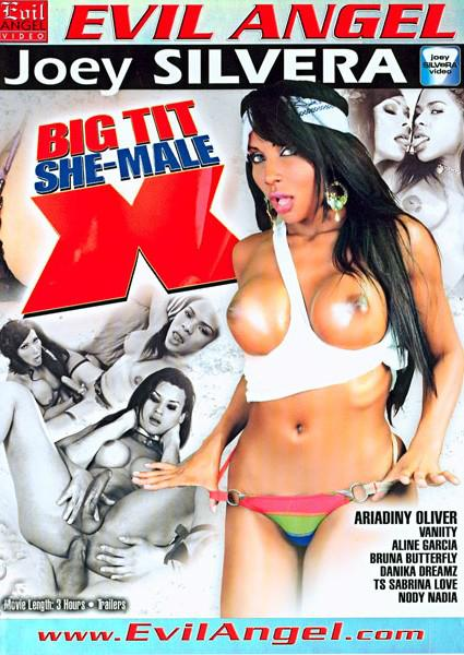 Big Tit She-Male X Box Cover