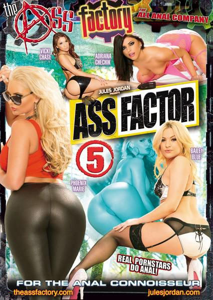 Ass Factor 5 Box Cover