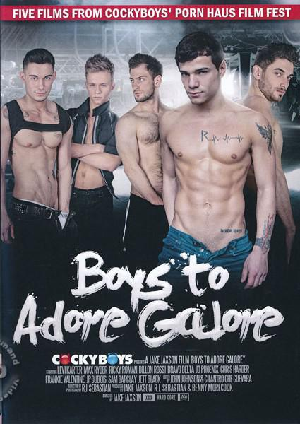 Boys to Adore Galore Box Cover