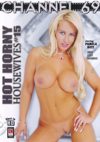 Hot Horny Housewives 15 Box Cover