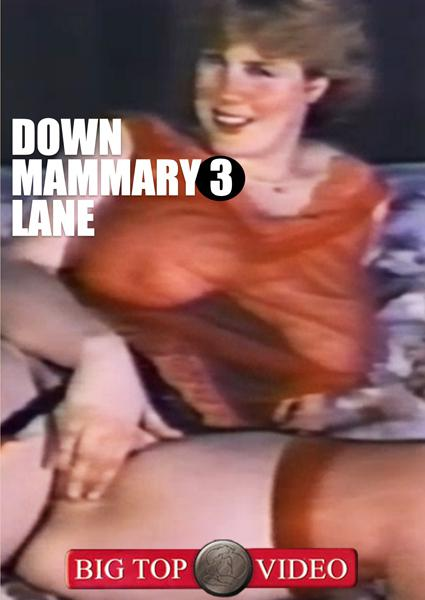 Down Mammary Lane 3 Box Cover