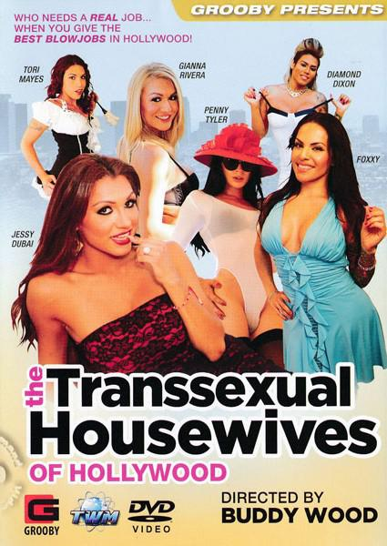 The Transsexual Housewives Of Hollywood Box Cover