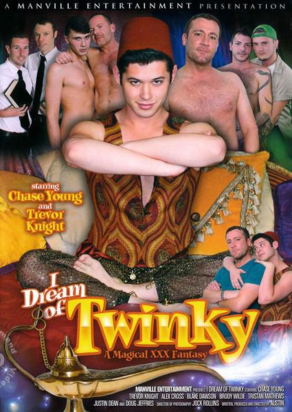 I Dream of Twinky Box Cover