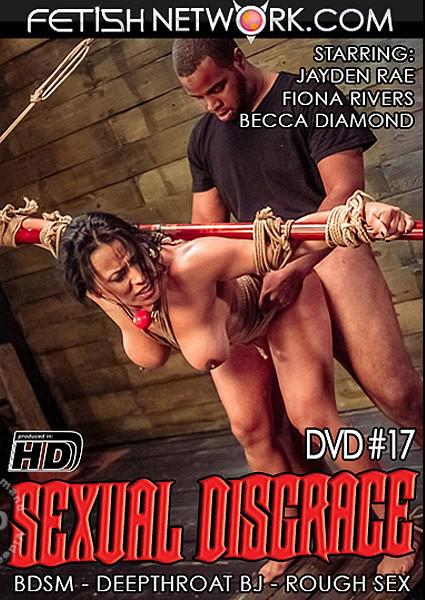Sexual Disgrace #17 Box Cover