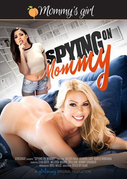 Spying On Mommy Box Cover