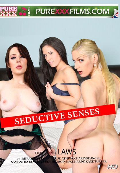 Seductive Senses Box Cover