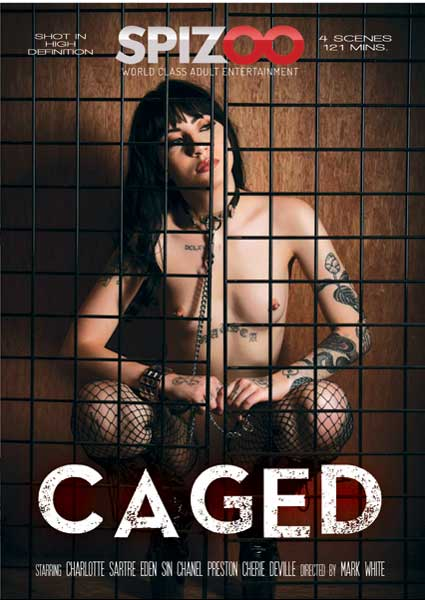 Caged Box Cover
