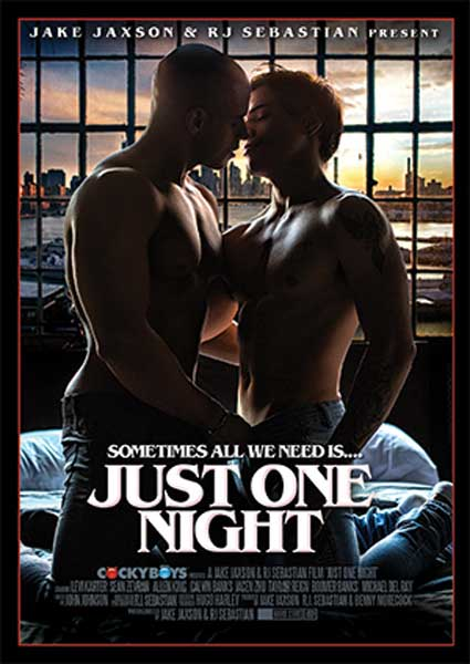 Just One Night Box Cover