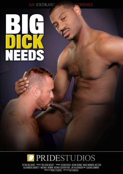 Big Dick Needs Box Cover