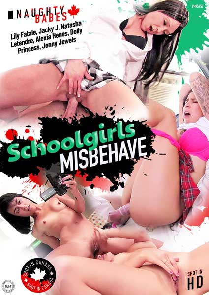 Schoolgirls Misbehave Box Cover