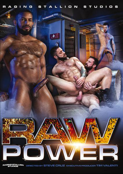 Raw Power Box Cover