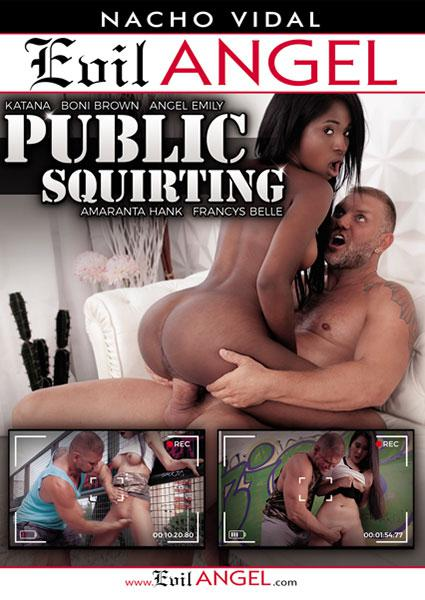 Public Squirting Box Cover