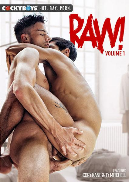 Raw Vol. 1 Box Cover