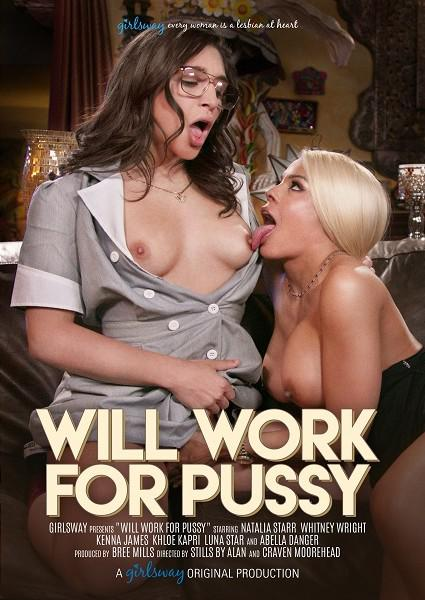 Will Work For Pussy Box Cover