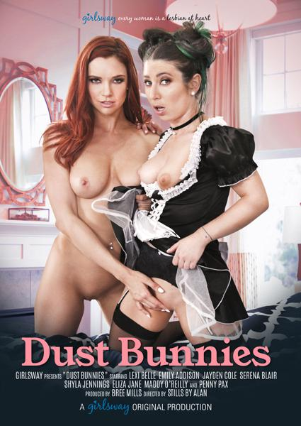 Dust Bunnies Box Cover