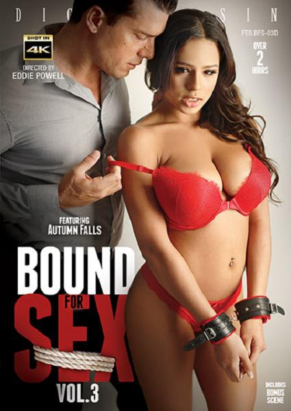 Bound For Sex Vol. 3 Box Cover