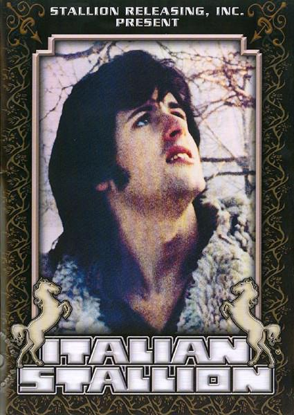 Italian Stallion Box Cover