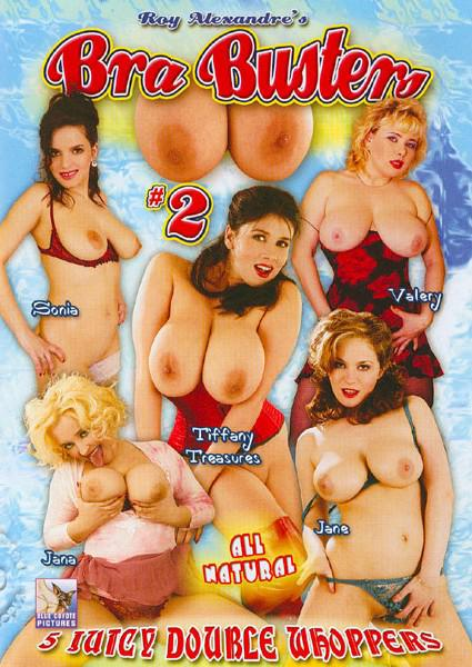 Roy Alexandre's Bra Busters #2 Box Cover